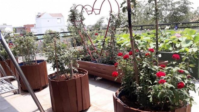 sân vườn trên sân thượng 15