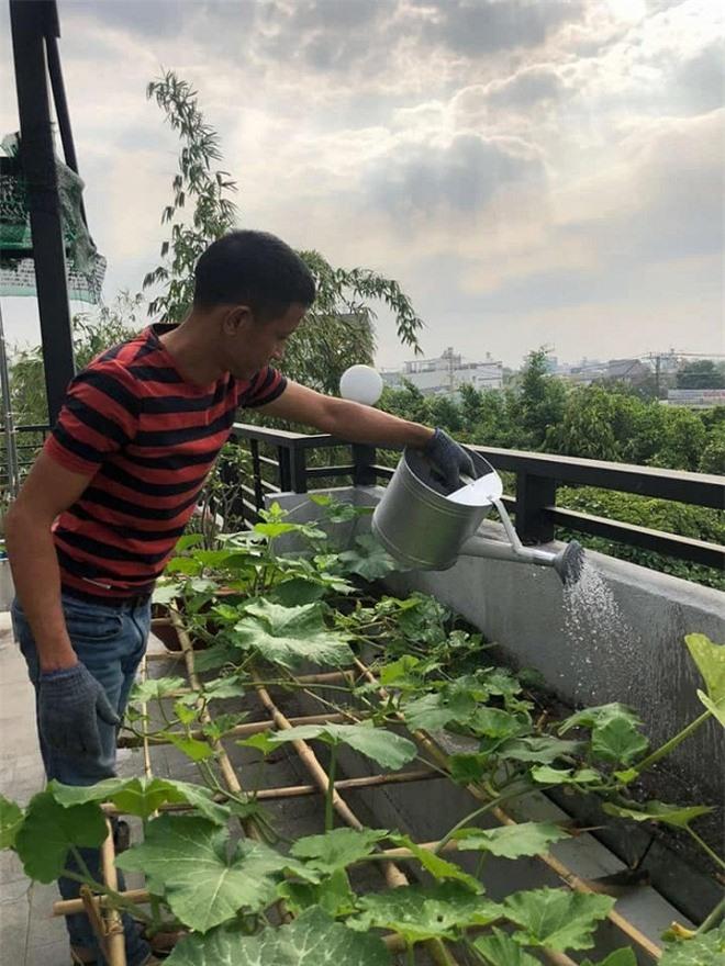 sân vườn trên sân thượng 6