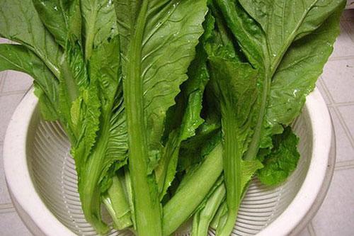 Nếu ăn cải xanh hàng ngày với một lượng nhất định, có thể ngăn ngừa được ung thư bàng quang, một trong số những ung thư hiện nay đang gặp rất nhiều ở những người lớn tuổi. Ảnh minh họa: Internet