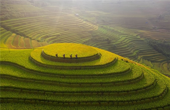 Cảnh sắc hữu tình 3 miền Việt Nam ảnh 10