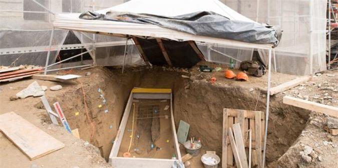 Cổ thụ hóa mộ cổ, che giấu người đàn bà lộng lẫy 2.200 tuổi - Ảnh 3.
