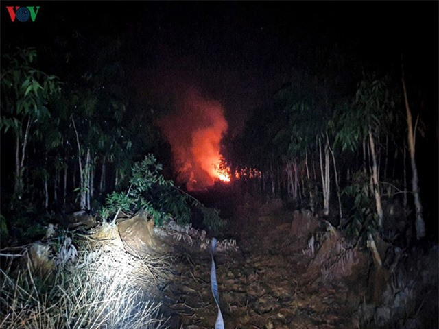Liên tiếp xảy ra cháy rừng lớn tại Kiên Giang - Ảnh 1.