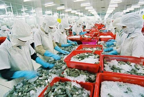Doanh nghiệp lưu ý quy định mới khi xuất khẩu tôm vào Australia (Ảnh minh họa/Internet)