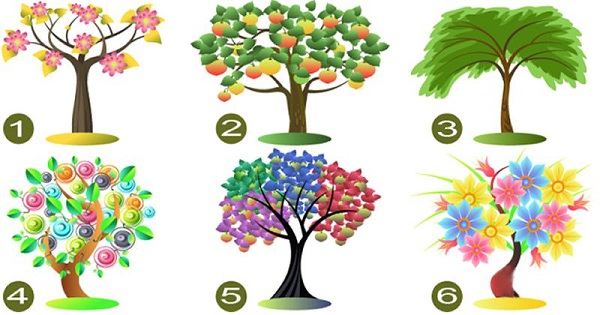 Bạn chọn cây nào?