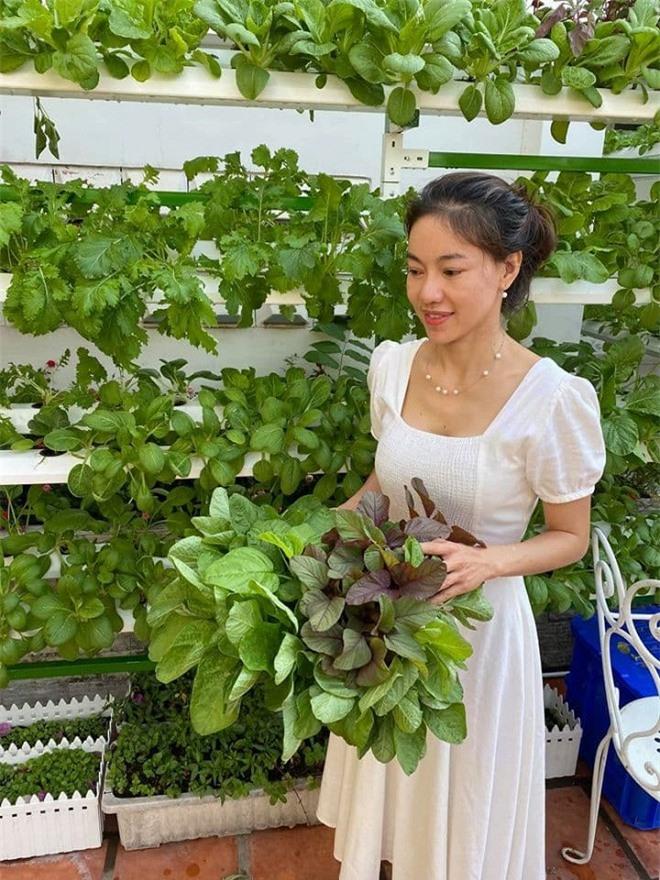 vườn rau của đạo diễn Hoàng Nhật Nam 13