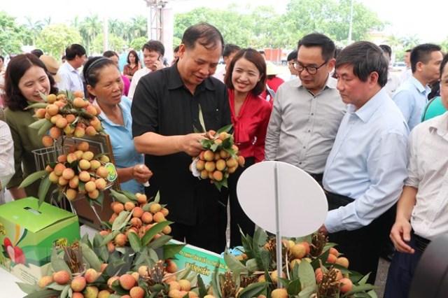 Quảng bá, tiêu thụ Vải thiều Thanh Hà tại Hà Nội