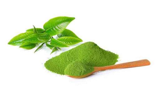 Bột trà xanh matcha vốn được coi là 'thần dược' làm đẹp