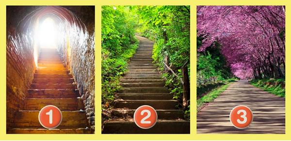 Bạn chọn con đường nào?