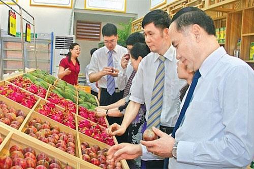 5 tháng đầu năm 2020, ngành nông nghiệp xuất siêu gần 3,3 tỷ USD (Ảnh: Internet)