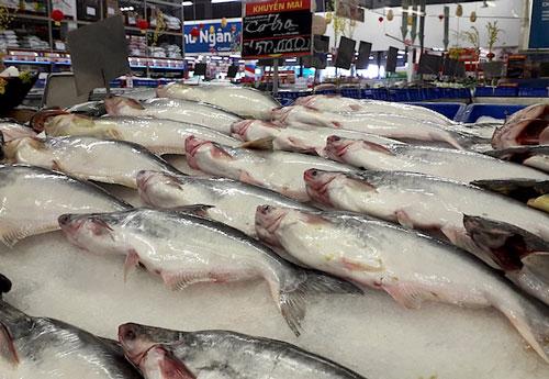 Xuất khẩu cá tra bao giờ thoát tăng trưởng âm?