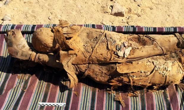 Các xác ướp sẽ được nghiên cứu bởi một nhà giải phẫu học trước khi đưa trở lại ngôi mộ (Ảnh: Bảo tàng cổ vật Ai Cập)