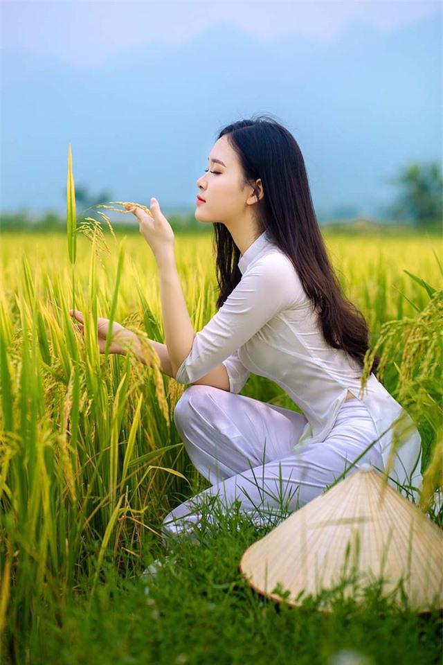 Á khôi Sinh viên Việt Nam khoe nét xuân thì bên cánh đồng lúa - 4