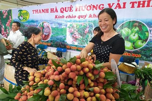 Vải ngon Thanh Hà cho người Hà Nội