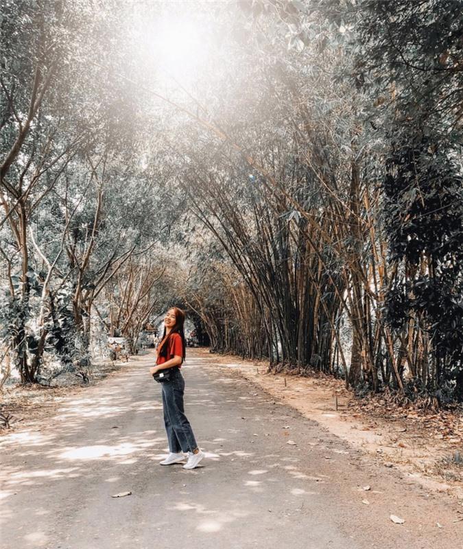 3 cánh rừng nguyên sinh miền Tây nổi tiếng trong giới xê dịch ảnh 11