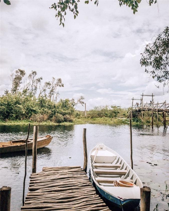 3 cánh rừng nguyên sinh miền Tây nổi tiếng trong giới xê dịch ảnh 06
