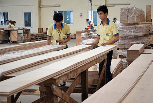 Mỹ điều tra lẩn tránh thuế với mặt hàng gỗ dán Việt Nam (Ảnh: Internet)