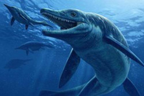"""""""Quái vật trong quái vật"""" ngư long 246 triệu tuổi hiện hình trên núi đá"""