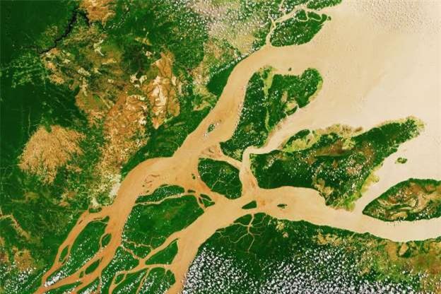 Châu thổ sông Amazon ở Nam Mỹ.