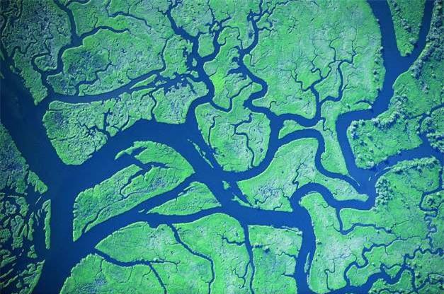 Châu thổ sông Columbia ở Mỹ.