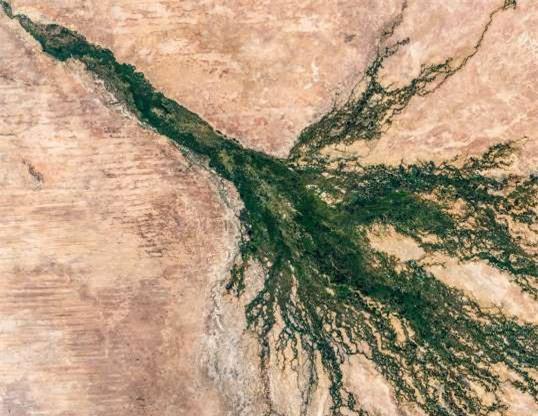 Châu thổ sông Okavango ở Botswana.