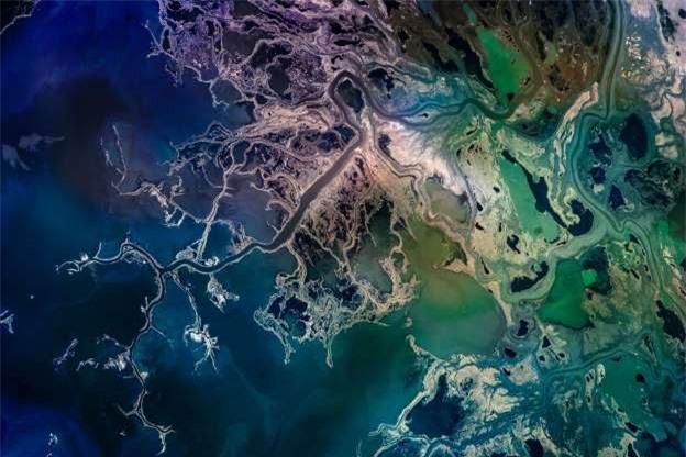 Châu thổ sông Saskatchewan ở Canada.