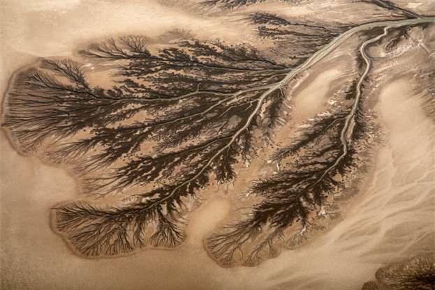 Châu thổ sông Colorado ở Mexico.