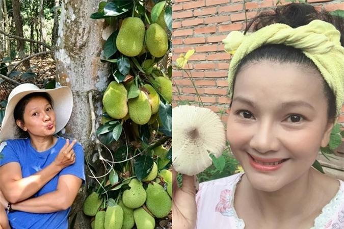 Do bận rộn với việc kinh doanh lẫn quay phim, bà mẹ ba con trồng các loại hoa, cây trái dễ chăm sóc.