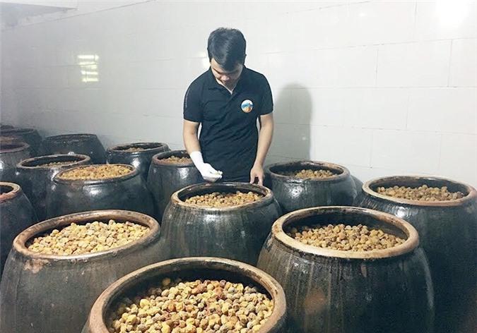 Khu chế biến sản xuất rượu mơ lông của anh Vũ Anh Tuấn.