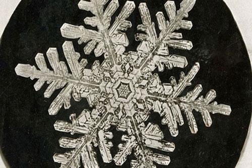 Những bức ảnh bông tuyết đầu tiên.