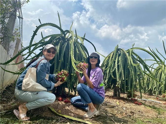 Về quê làm vườn, trồng cây, Hà Tăng vẫn thể hiện thần thái đỉnh cao không ai sánh kịp 3