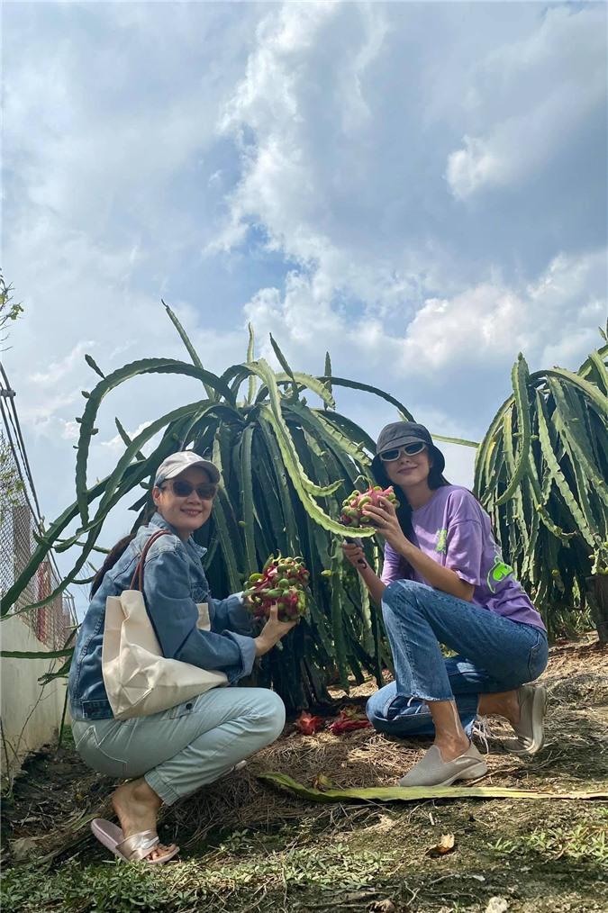 Về quê làm vườn, trồng cây, Hà Tăng vẫn thể hiện thần thái đỉnh cao không ai sánh kịp 2