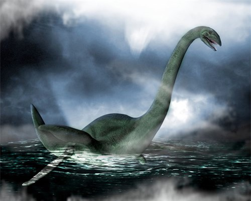 Xác động vật dạt vào bờ Loch Ness, nghi là quái vật huyền thoại - 4