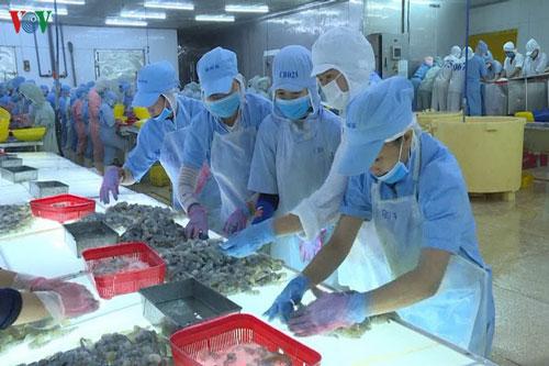 DN thủy sản chủ động sản xuất, tự mình cứu mình