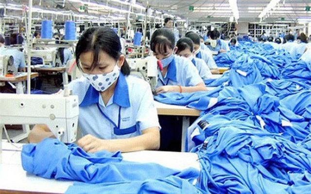 EVFTA tác động thế nào đến nồi cơm của người dân Việt? - Ảnh 4.