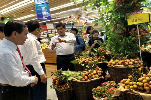 Hệ thống siêu thị hỗ trợ đầu ra cho trái vải (Ảnh Internet)