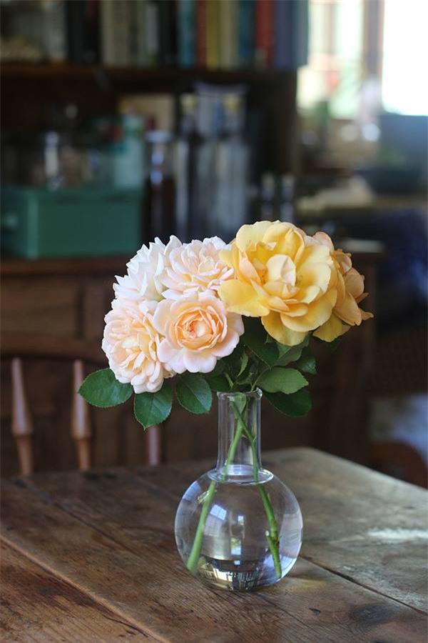 Cuộc đời bình yên bên vườn hoa trái đẹp như thiên đường của bà lão 83 tuổi - 14