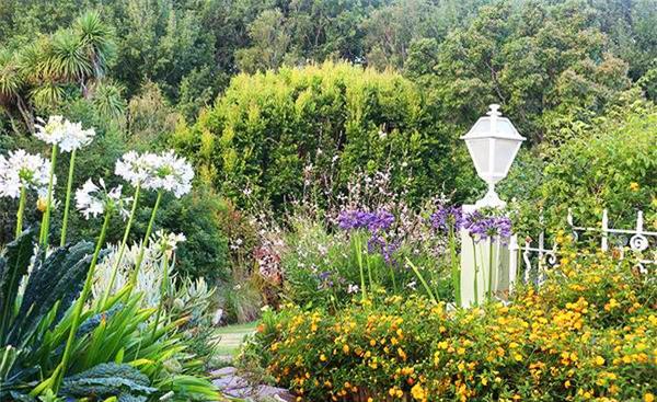 Cuộc đời bình yên bên vườn hoa trái đẹp như thiên đường của bà lão 83 tuổi - 2