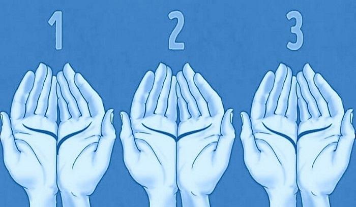 Bạn chọn cặp chỉ tay nào?