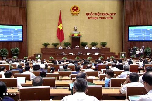 Quốc hội bỏ phiếu thông qua EVFTA và EVIPA ngày 8/6/2020.