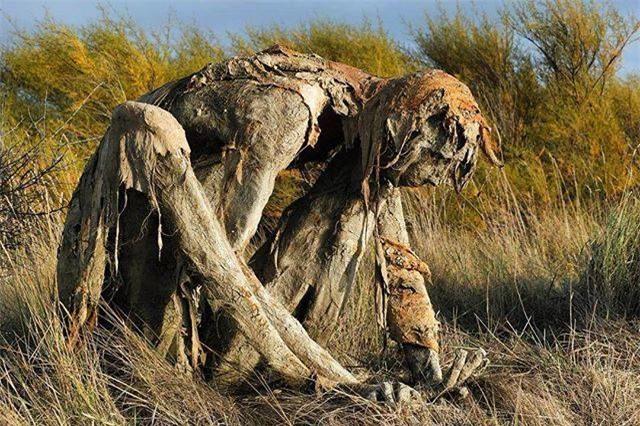 Buổi tối gặp những bức tượng đầm lầy này đảm bảo du khách hết hồn bỏ chạy - Ảnh 1.