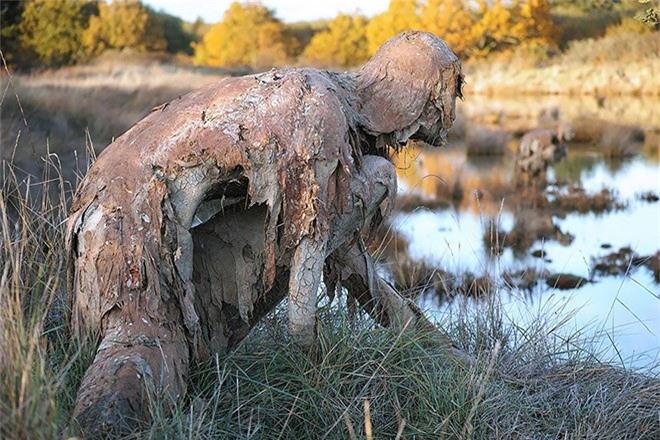 Buổi tối gặp những bức tượng đầm lầy này đảm bảo du khách hết hồn bỏ chạy - Ảnh 2.
