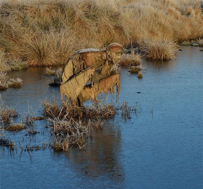 Buổi tối gặp những bức tượng đầm lầy này đảm bảo du khách hết hồn bỏ chạy - Ảnh 5.