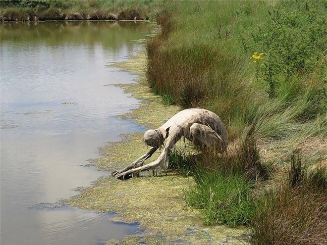 Buổi tối gặp những bức tượng đầm lầy này đảm bảo du khách hết hồn bỏ chạy - Ảnh 6.