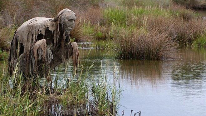 Buổi tối gặp những bức tượng đầm lầy này đảm bảo du khách hết hồn bỏ chạy - Ảnh 8.