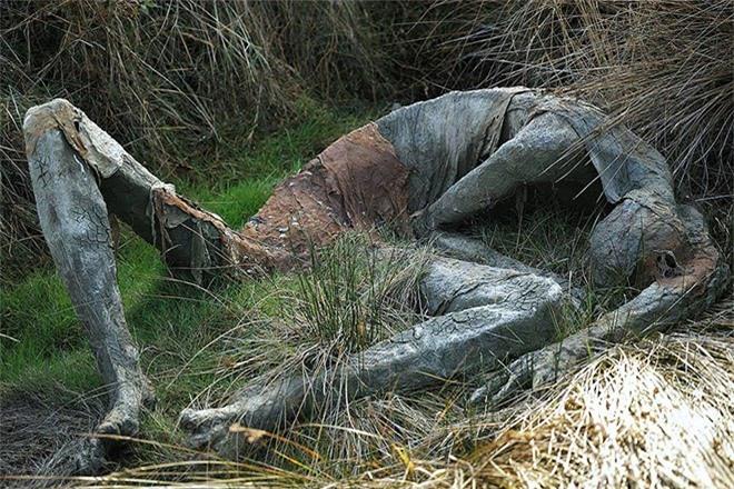 Buổi tối gặp những bức tượng đầm lầy này đảm bảo du khách hết hồn bỏ chạy - Ảnh 9.