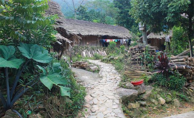 Nhà mái lá đơn sơ của các hộ dân xóm Sưng