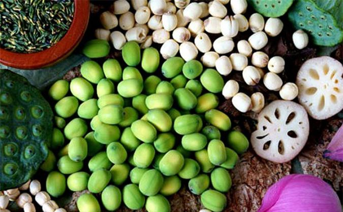 Sen là một loại cây hoa mà tất cả các phần như hoa, lá, hạt, củ đều có thể trở thành nguyên liệu chế biến thành nhiều món ngon độc đáo. Nguồn:havtravel.vn