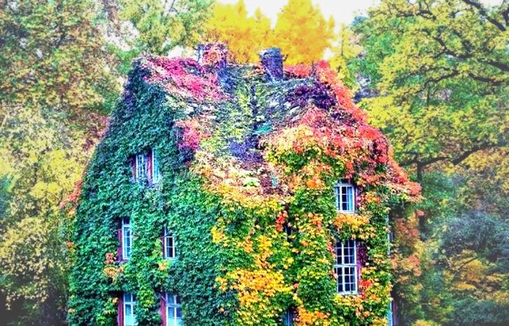Ngôi nhà Xanh, Giessen, Đức