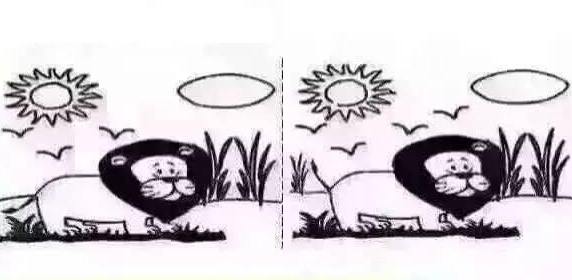 Nhìn vào hai bức hình, bạn nhận ra điều khác biệt nào trước tiên?