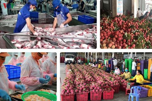 EVFTA mang lại nhiều cơ hội và thách thức cho nông sản Việt. (Ảnh minh họa: KT)